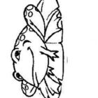 Frogs-coloring-book-101