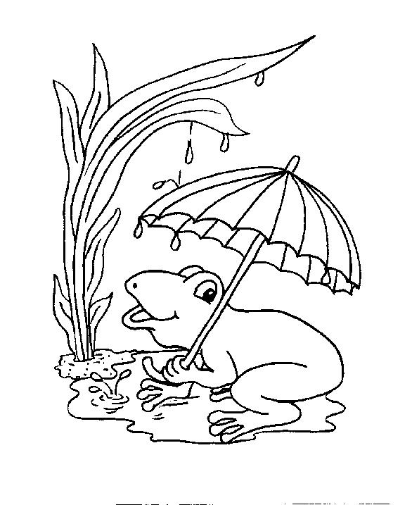 Frogs-coloring-book-13