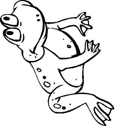 Frogs-coloring-book-26