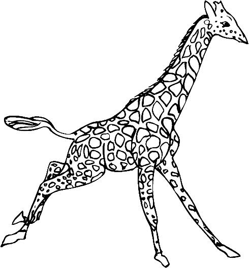 Giraffes-coloring-page-20