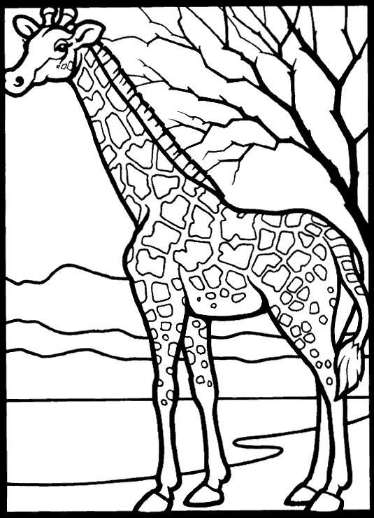 Giraffes-coloring-page-22