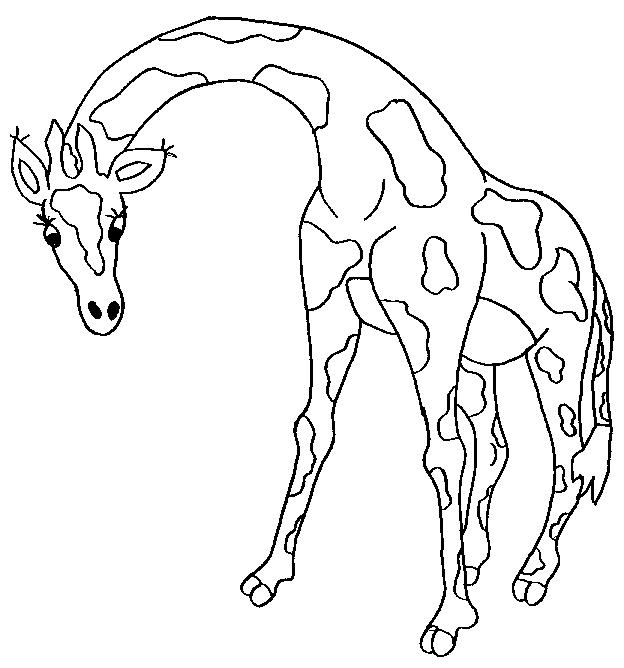 Giraffes-coloring-page-5