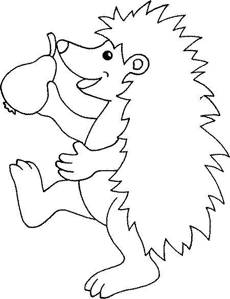 Hedgehogs-coloring-pages-13
