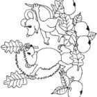 Hedgehogs-coloring-pages-3