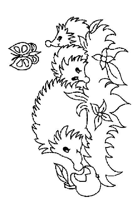 Hedgehogs-coloring-pages-31