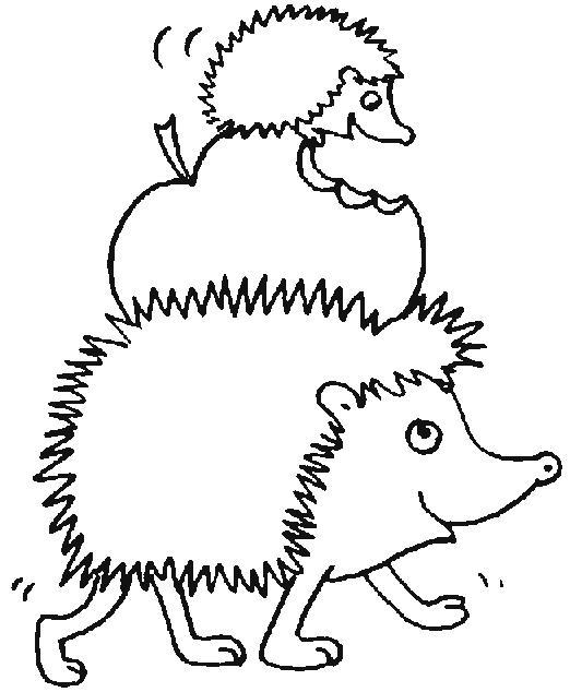 Hedgehogs-coloring-pages-5
