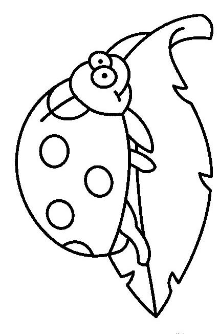 Insects-coloring-page-23