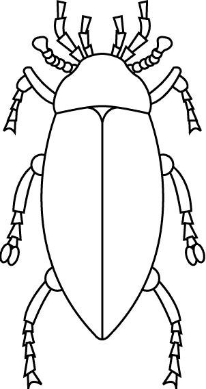 Insects-coloring-page-25