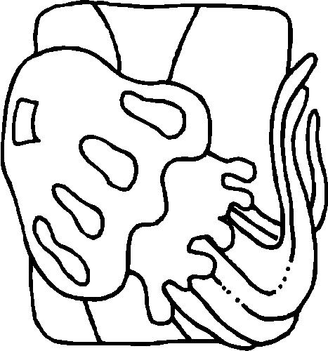 Jellyfish-coloring-page-4