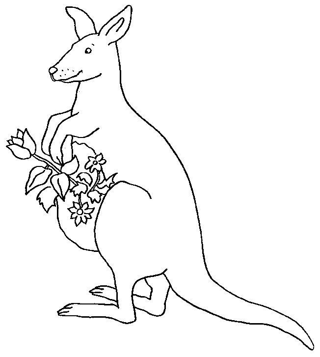 Kangaroos-coloring-page-6