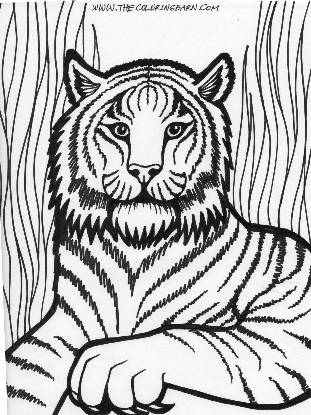 Lions Coloring Pages Coloring Kids - Coloring Kids