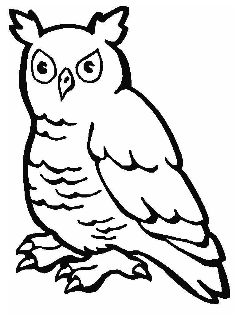 Owls-coloring-pages-2