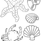 Seaside-coloring-page-68
