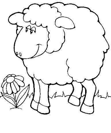 Sheep-coloring-page-27