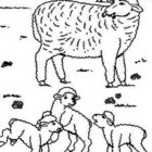 Sheep-coloring-page-48