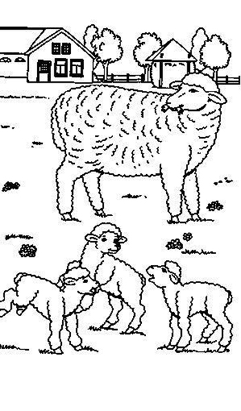 Sheep-coloring-page-48