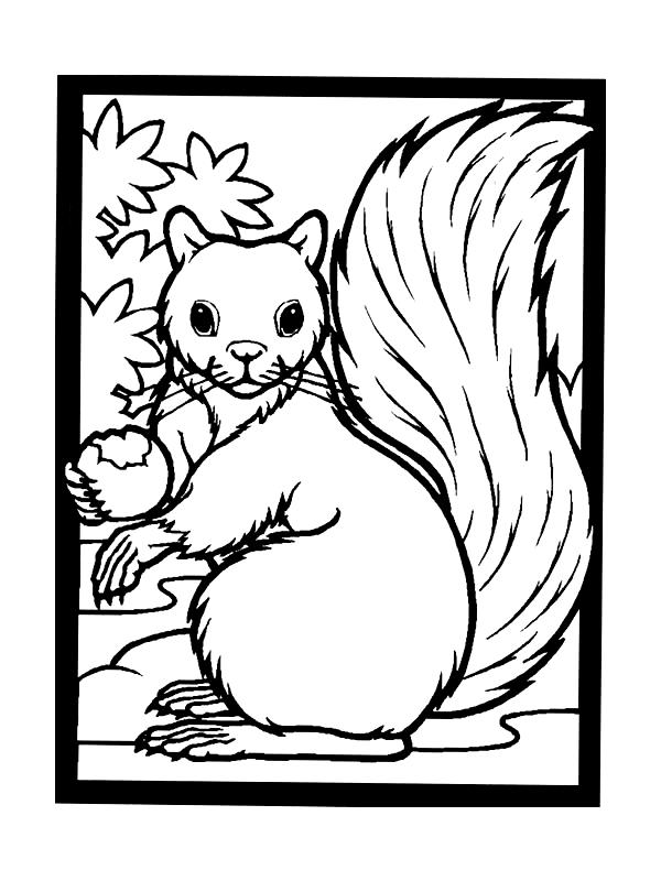 Squirrels-coloring-page-10