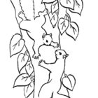 Squirrels-coloring-page-14
