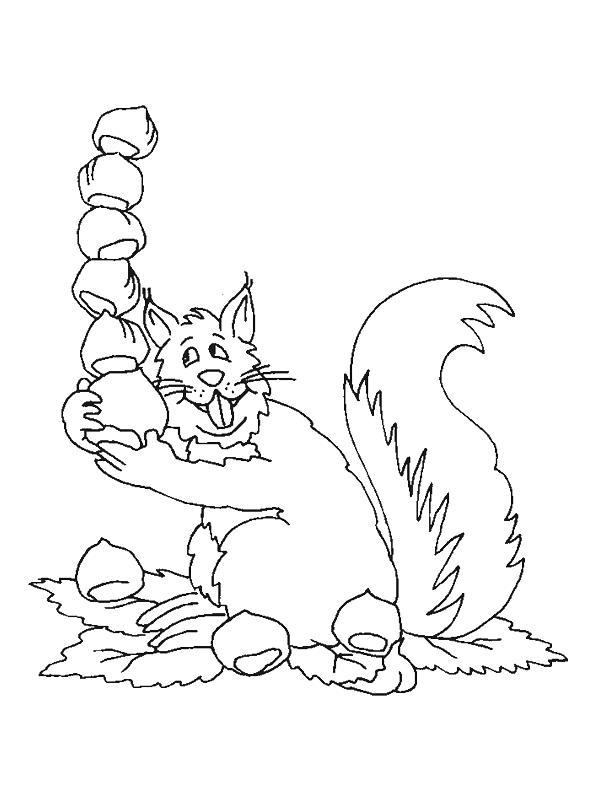 Squirrels-coloring-page-16