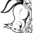 Squirrels-coloring-page-29