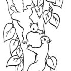 Squirrels-coloring-page-33