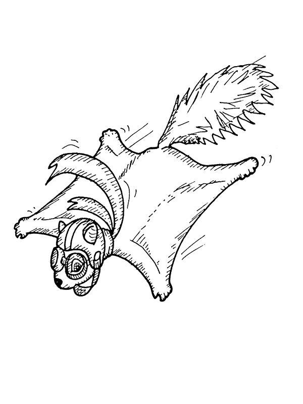 Squirrels-coloring-page-9