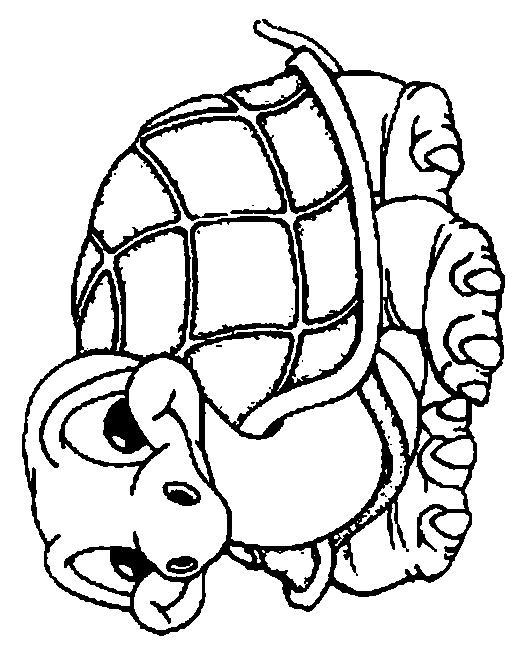 Turtles-coloring-book-18
