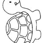 Turtles-coloring-book-19