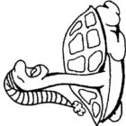 Turtles-coloring-book-6