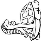 Turtles-coloring-book-6