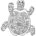 Turtles-coloring-book-8