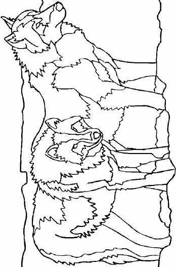 Wolves-coloring-page-29