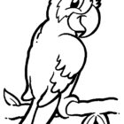 Animal Coloring Pages (18)