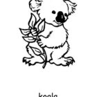 Australia Day Coloring Pages (14)