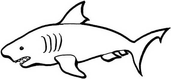 Australia Day Coloring Pages (16)