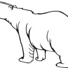 Bear Coloring Pages (13)