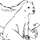 Bear Coloring Pages (2)