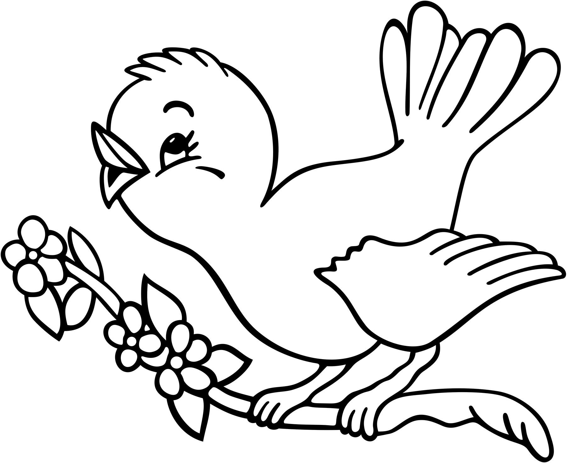 bird10 - Coloring Kids