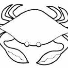 crabs10