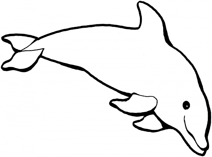 Dolphin Coloring Pages (5)
