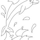 Dolphin Coloring Pages (9)