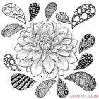 flower 40