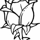 Flower Coloring Pages (15)