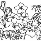 Flower Coloring Pages (18)