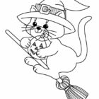 hallween witch cat