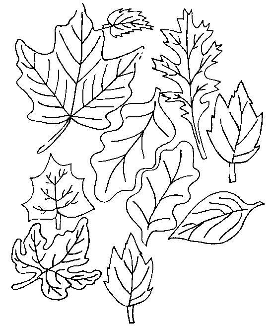 http—acoloringbook.com-wp-content-uploads-autumn-Autumn-coloring-pages-89