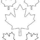 Maple-Leaf-Cut-Out-Templates-of-Canada-Day-Coloring-Pages