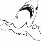Shark Coloring Pages (10)