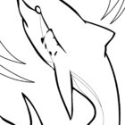 Shark Coloring Pages (12)