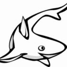 Shark Coloring Pages (13)
